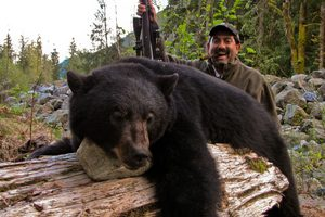 black-bear-hunting-canada-bc